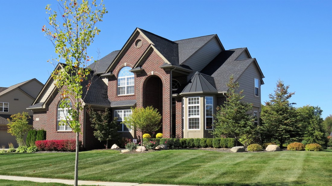 Professional Tree & Shrub Care South Lyon MI | Spring Fever Lawn Care - IMG_0032